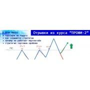 Продвинутый курс обучения торговле бинарными опционами ПРОФИ-2