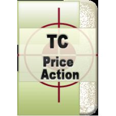 Торговая система «Методы Price Action» Сергей Негин
